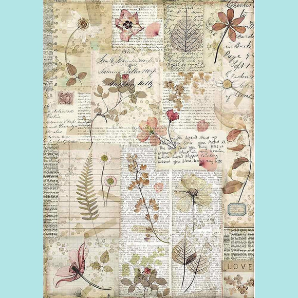 Stamperia - A4 Rice Paper Packed Pressed Flowers
