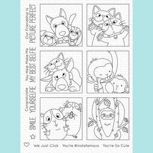 My Favorite Things - BB Picture Perfect Stamps
