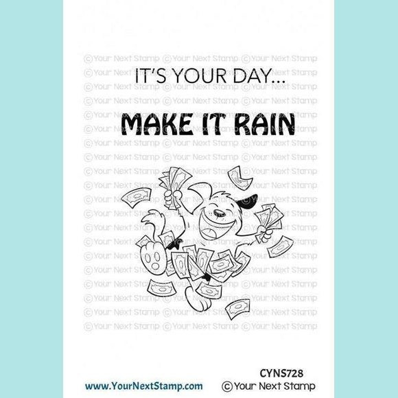 Your Next Stamp - YNS - Make it Rain Stamps and Dies
