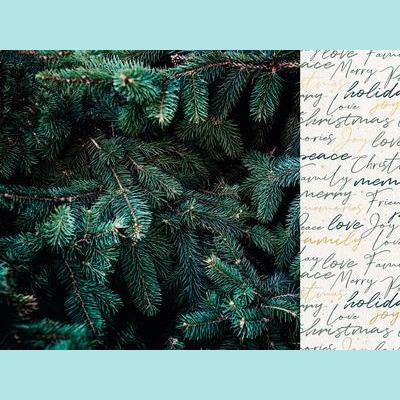 Kaisercraft - Emerald Eve 12x12 Scrapbook Paper - Evergreen