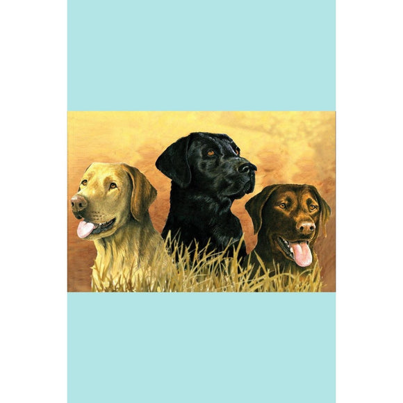 Reeves Artist Collection -Labs In Marsh Painting By Numbers - Large