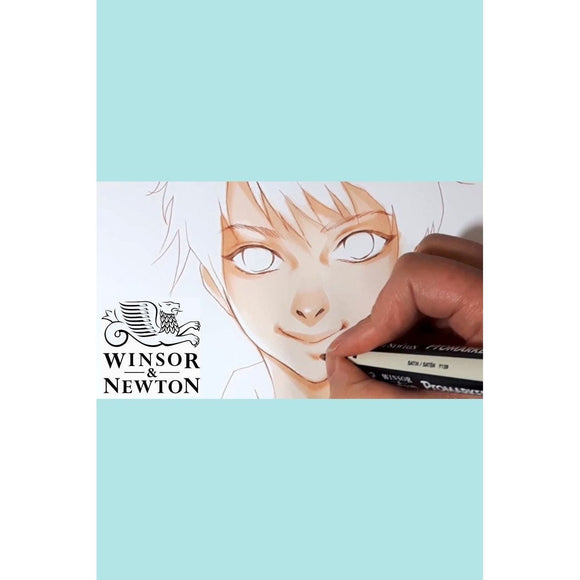 Winsor & Newton PROMARKER - Browns - Alcohol based & Dye based Markers