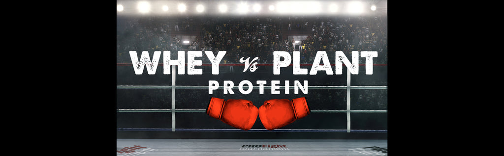 Which is Best? Whey or Plant Protein?