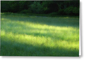 Early Morning Meadow - Greeting Card