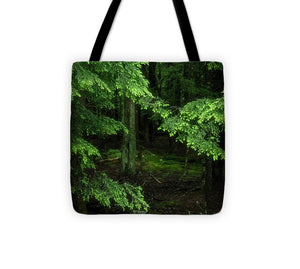 Hemlock Forest - Tote Bag