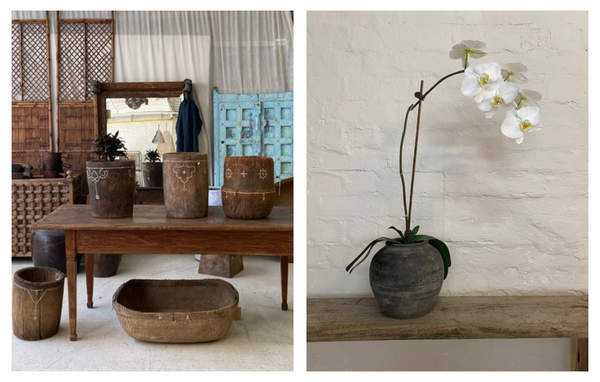 Water tiger provides timeless interior design ideas. One image showcases timeless home decor on a vintage table and the second image of a white orchid potted in a vintage, timeless pot.