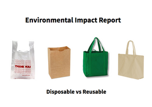 Reusable vs. Disposable Bags: What's Better for The Environment?