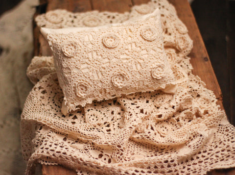 Vintage Rosette Pillow Prop Set