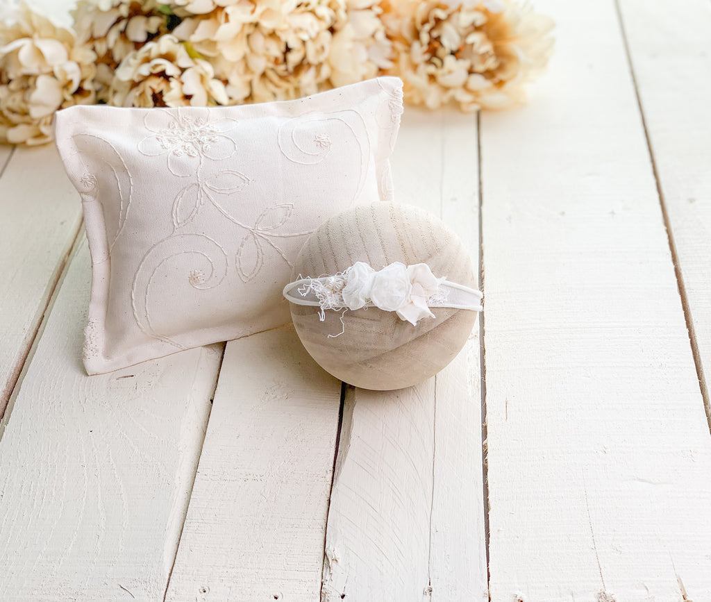 Ivory Embroidered Pillow Prop Set
