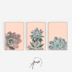 SUCCULENT PRINT SET ON PINK BACKGROUND- INSTANT DOWNLOAD