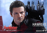 Hot Toys The Avengers Age of Ultron Hawkeye 1/6 Scale Action Figure MMS289