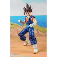 Demoniacal Fit Possessed Horse Ultimate Fighter Vegetto/ Vegito Action Figure 6