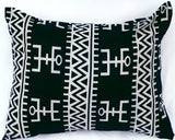 Indigeneity Accent Pillow