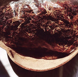 Wild Harvested, Purple Sea Moss