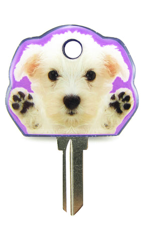 PUPPY 02 - Scottish Terrier - White