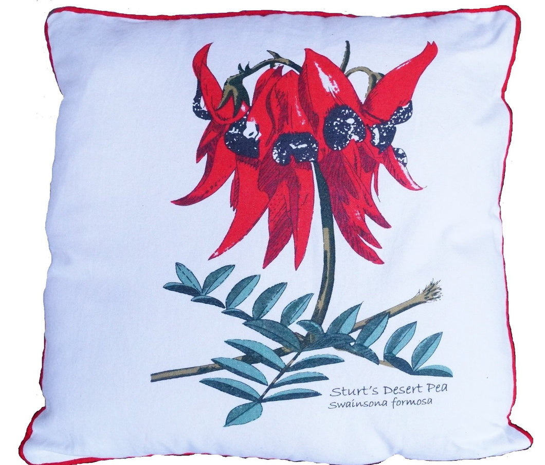Cushion Cover - Sturt Pea - Allgifts Australia