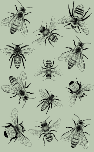 Tea Towel - Sketch Bee