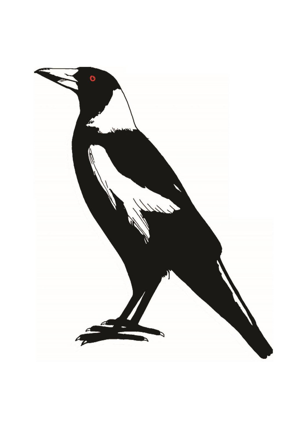 Tea Towel - Magpie (Large) - Allgifts Australia