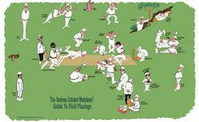 Tea Towel - Cricket - Allgifts Australia