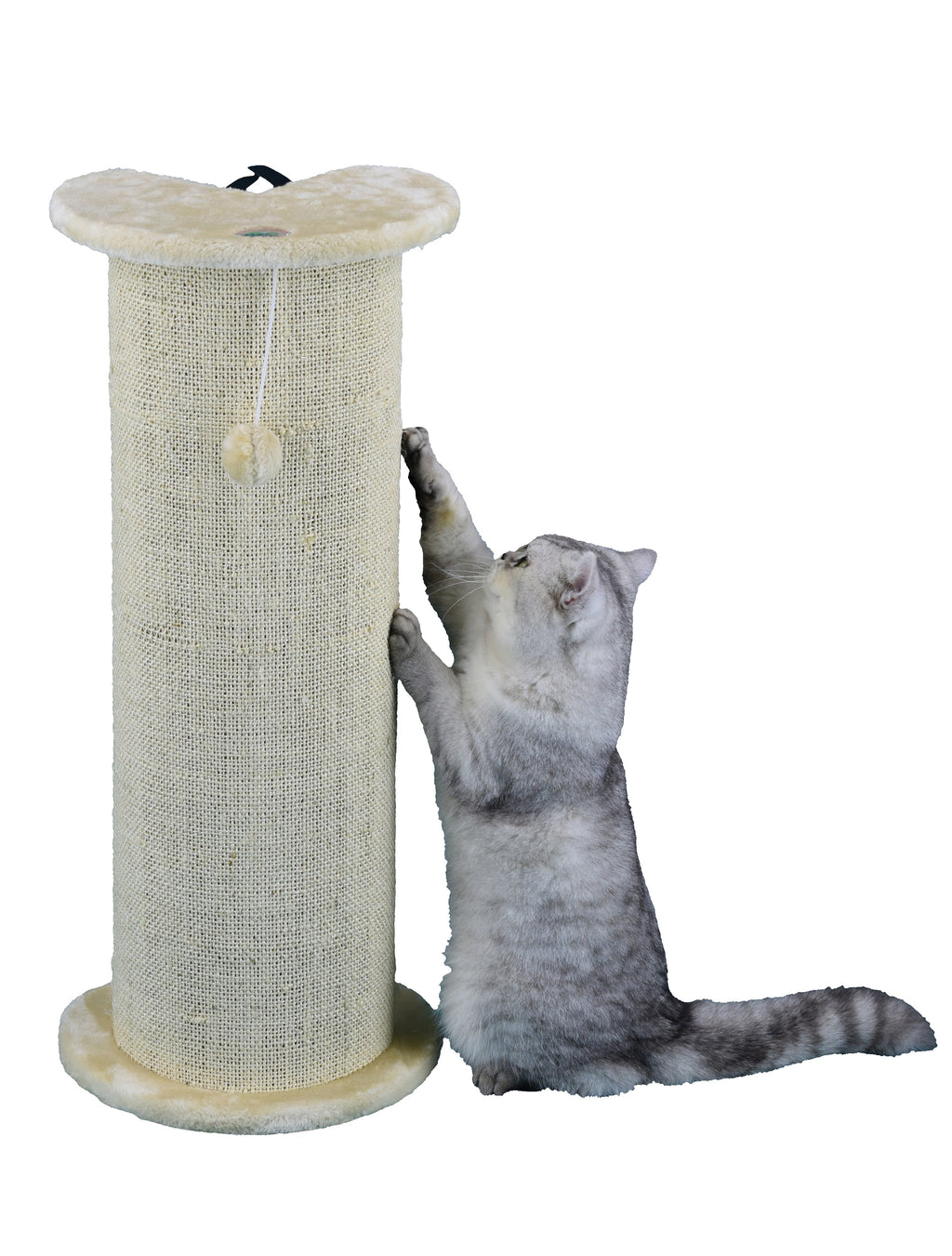 "29"" Cat Scratch Post (F17)"