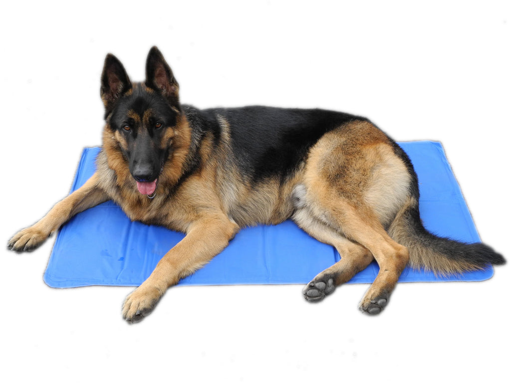 "Pet Cooling Gel Pad (Available in 19"" to 43"")"