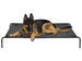 "Elevated Cooling Pet Cot Bed (Available in 28"" to 55"")"
