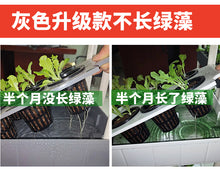 Home Farming Hydroponics Set (4 layers) - self set up; delivery provided