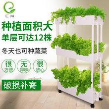 Home Farming Hydroponics Set (4 layers) - self collect