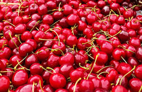 Turkey Cherries 5kg 30-32mm (Jumbo)