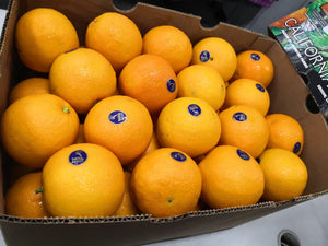 Navel Orange USA/S Africa/Australia 56-72pcs