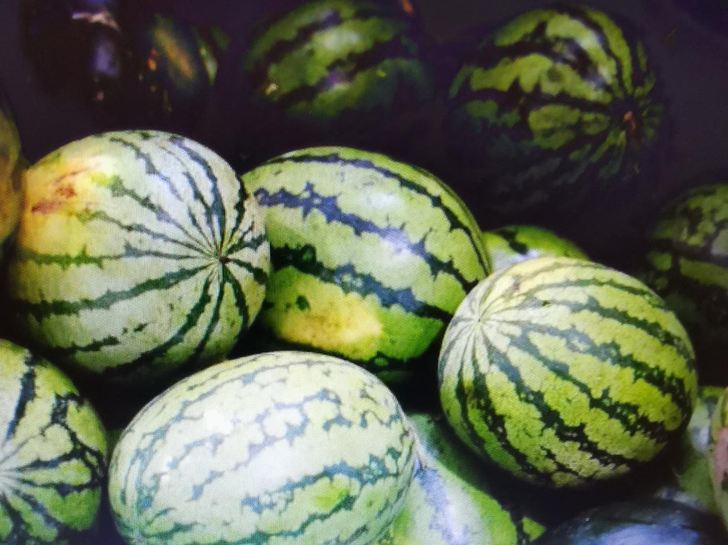 Local Watermelon 10kg