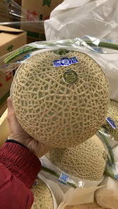 Japan Muskmelon 5pc