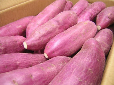 Vietnam Sweet Potato 2 x 4.5kg (9kg)