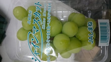 Japan Shimane Shine Muscat Green Grapes