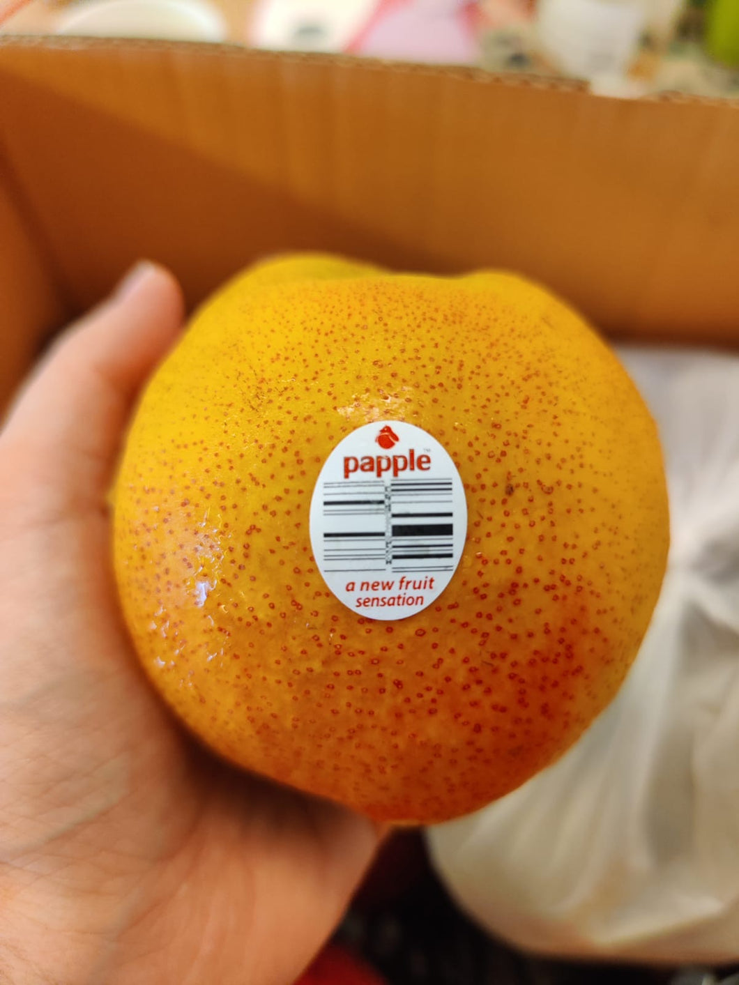 Papple Pear 3kg