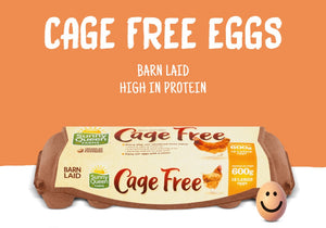Sunny Queen Farms Free Cage Eggs - 180 pcs (foodservice pack)