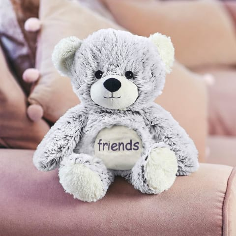 Warmies Large 33cm - Plush Animals filled with Flaxseed and French Lavender - Friends Bear