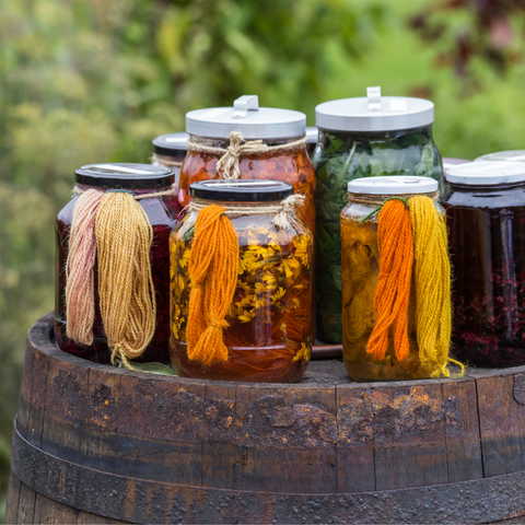 Jars of natural dye materials with small skeins of yarn showing the colors they produce.