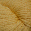 Cascade 220 Superwash Aran in 801 - Army Green  | Michigan Fine Yarns