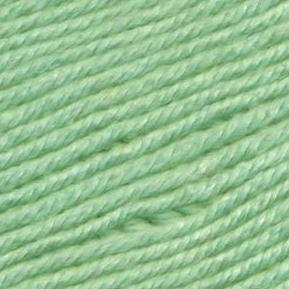 Ella Rae Cozy Soft in 59 - Serpentine | Michigan Fine Yarns