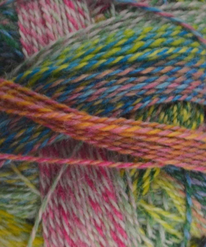 Schoppel Wolle Zauberball Crazy at Michigan Fine Yarns