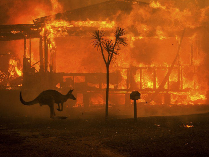 Australian Bush Fires...We Need Your Help