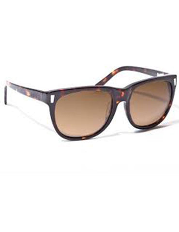Ashbury Daytripper Sunglasses Brown Tort