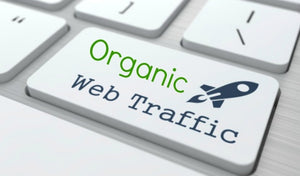 Buy Google Organic And Real Website Traffic - Starting From $3.99 Only