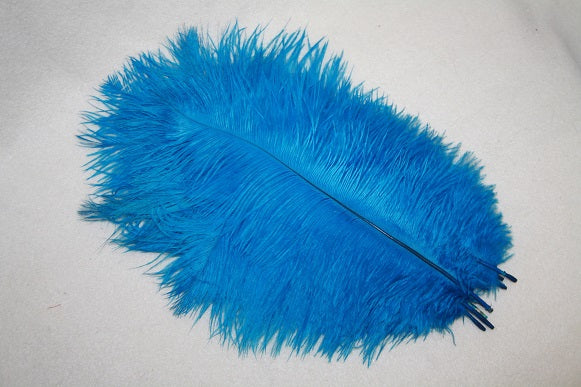 10 ostrich feathers Turquoise L987