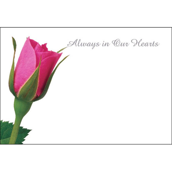 Pack of 50 Florist Cards - Always In Our Hearts