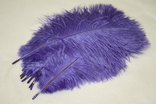 10 ostrich feathers purple