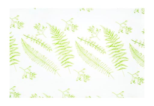 80cm x 100m Fern On Clear  Cellophane