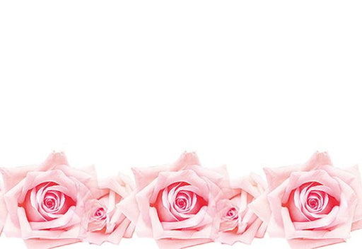 50  Blank  Florist Cards - Pink Roses