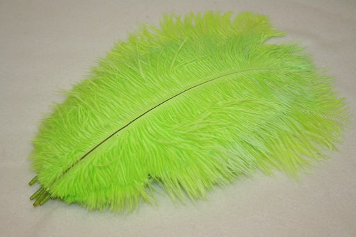 10 ostrich feathers Lime